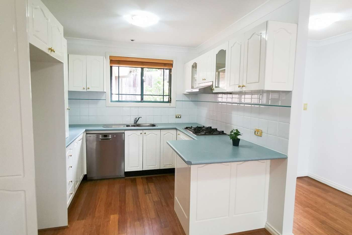 Main view of Homely villa listing, 4/59 Campbell Avenue, Normanhurst NSW 2076