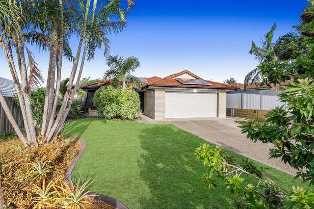 6 Murdock Place, Wakerley QLD 4154