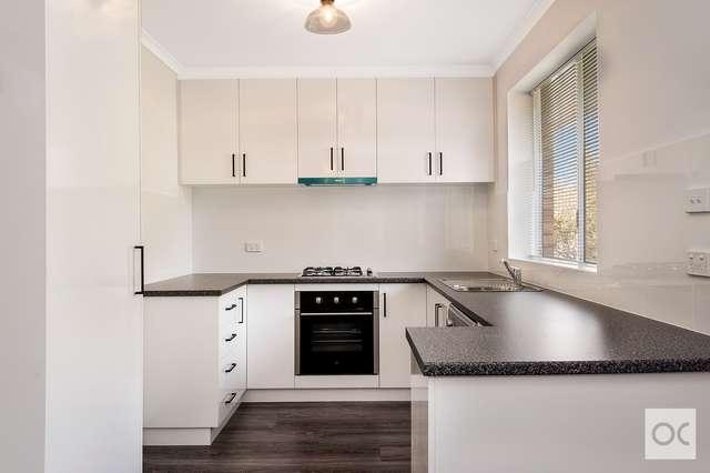 4/186 Jeffcott Street, North Adelaide SA 5006