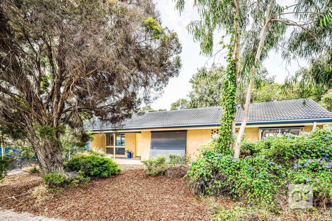 Main view of Homely house listing, 75 Cashel Street, Pasadena SA 5042