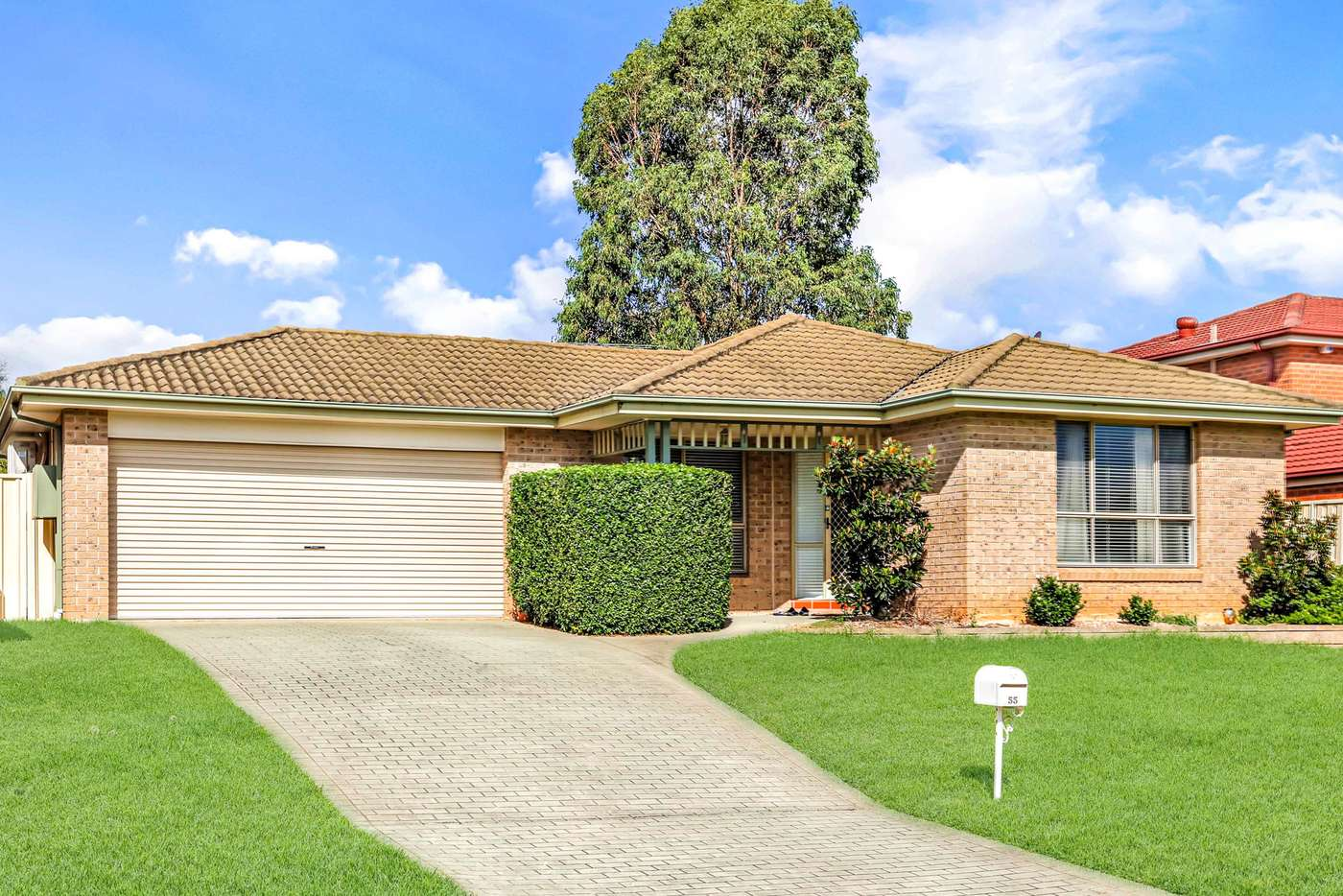 Main view of Homely house listing, 55 Ironbark Crescent, Blacktown NSW 2148