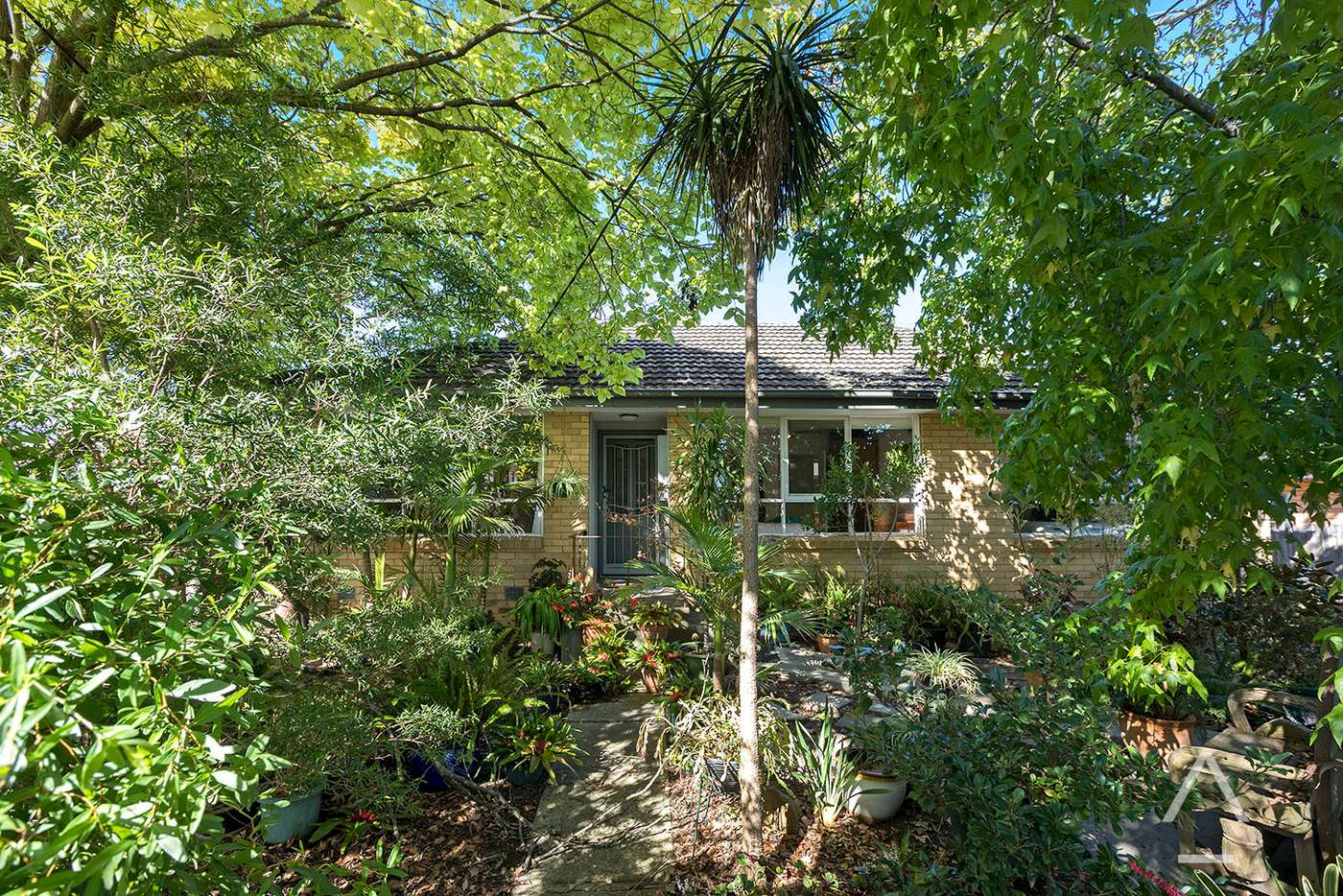 Main view of Homely house listing, 18 Cassowary Street, Doncaster East VIC 3109