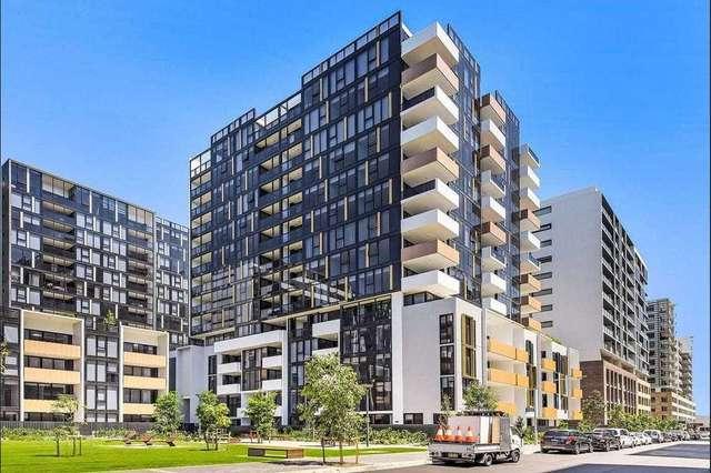 Level 9/933/1 Galloway Street, Mascot NSW 2020