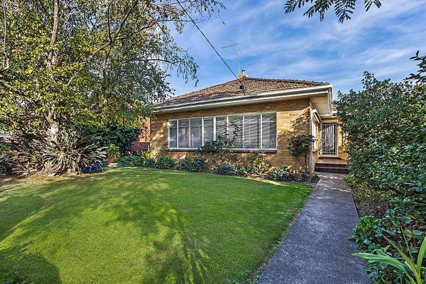 Main view of Homely house listing, 20 Porter Road, Balwyn VIC 3103