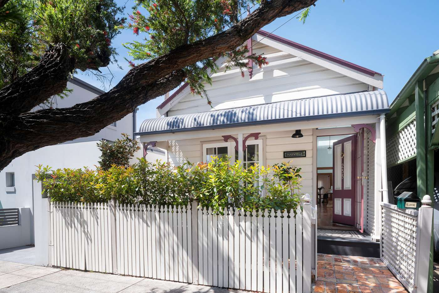 Main view of Homely house listing, 255 Elswick Street, Leichhardt NSW 2040