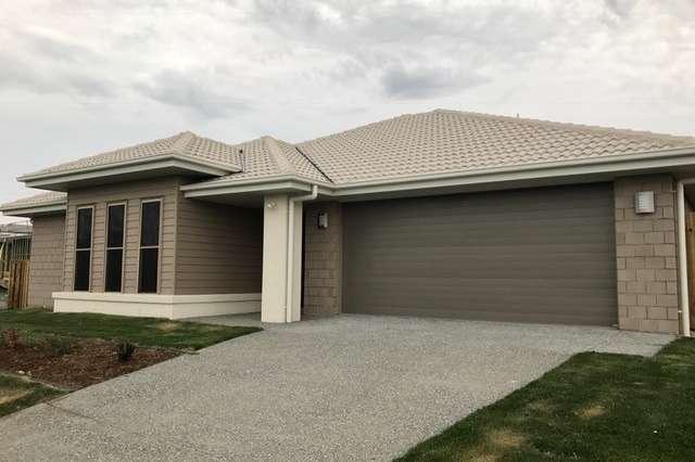 53 Voyager Terrace, Pimpama QLD 4209