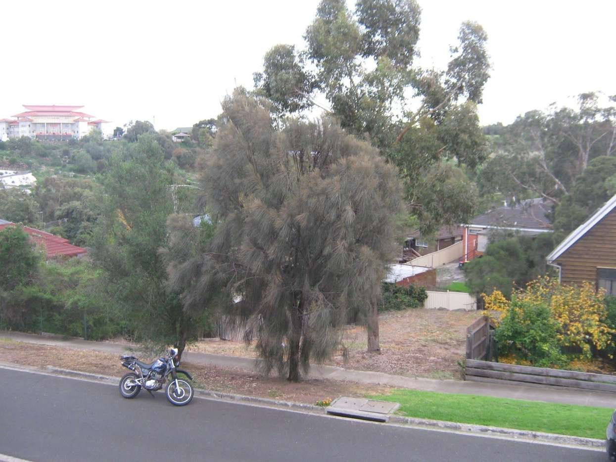 Main view of Homely  listing, 7 Rhonda Street, Avondale Heights, VIC 3034
