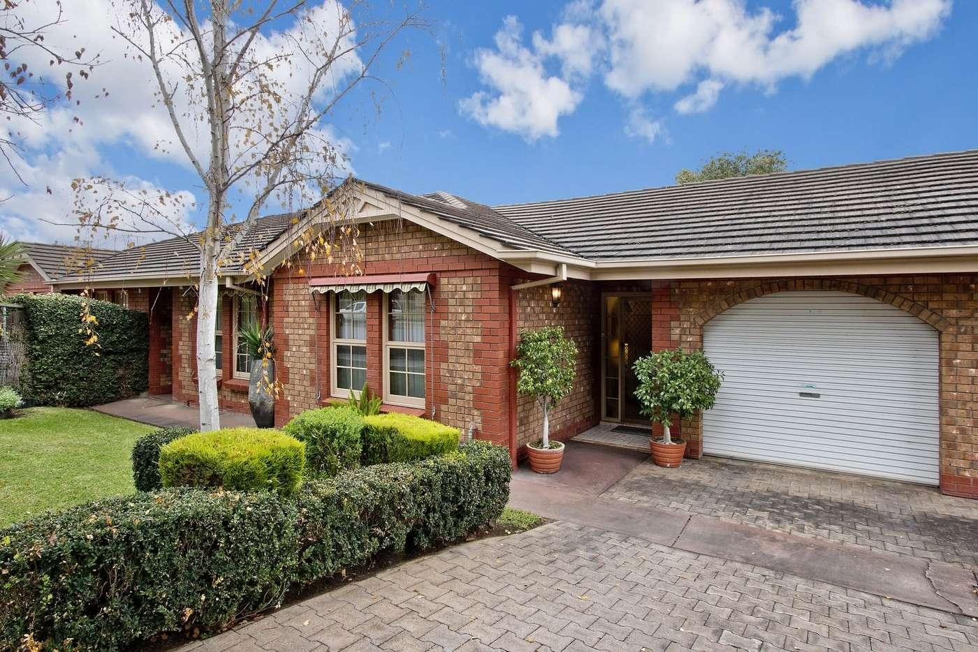 Main view of Homely unit listing, 2/21-23 Battams Road, Royston Park SA 5070