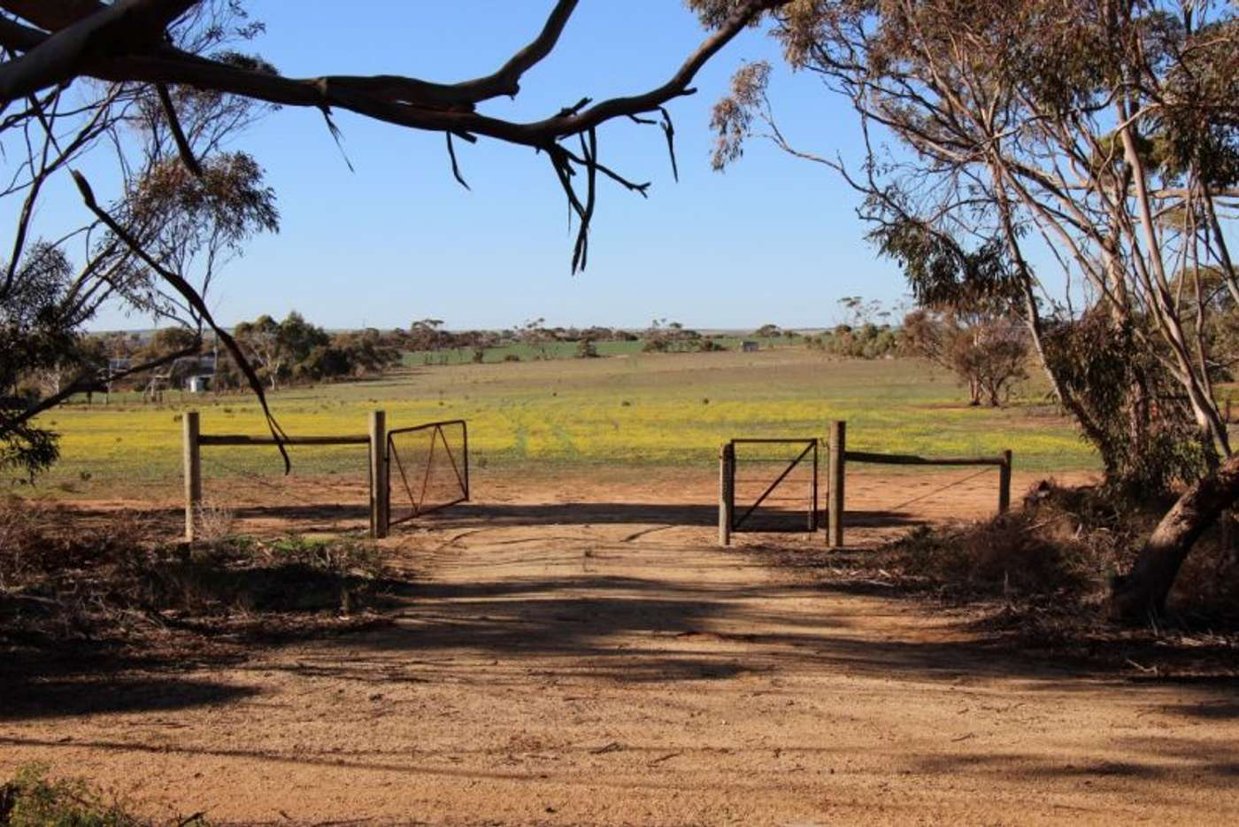 Main view of Homely residentialLand listing, Lot 91 Ridley Road, Mannum SA 5238