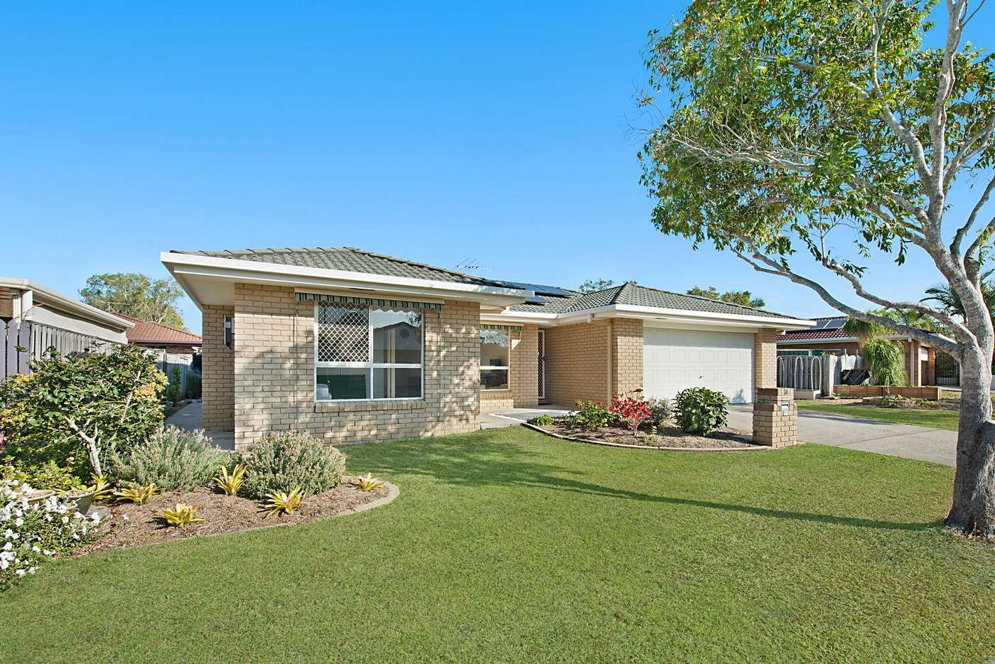 Main view of Homely house listing, 3 Padua Place, Boondall, QLD 4034