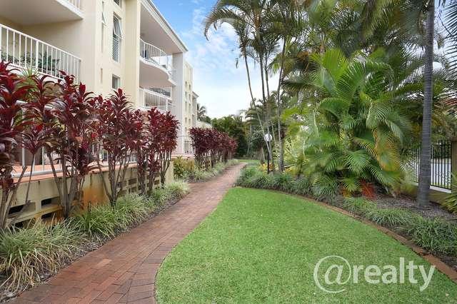 3/8-16 Dalpura Street, Surfers Paradise QLD 4217
