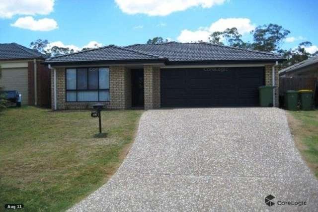 43 Collins Street, Collingwood Park QLD 4301