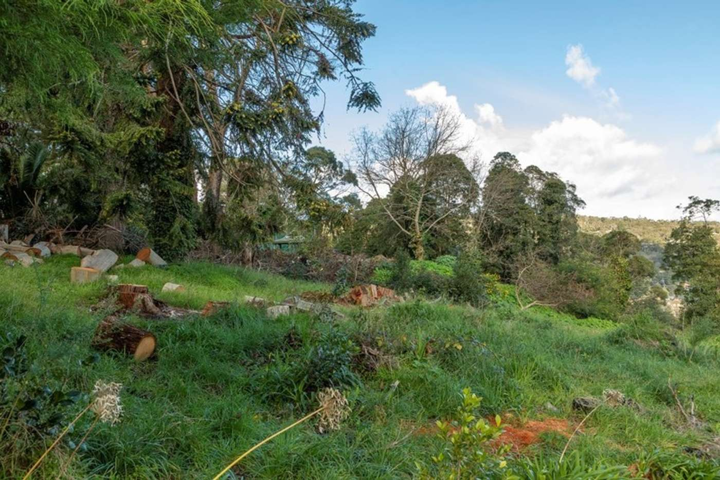 Seventh view of Homely residentialLand listing, 1317 Burwood Highway, Upper Ferntree Gully VIC 3156