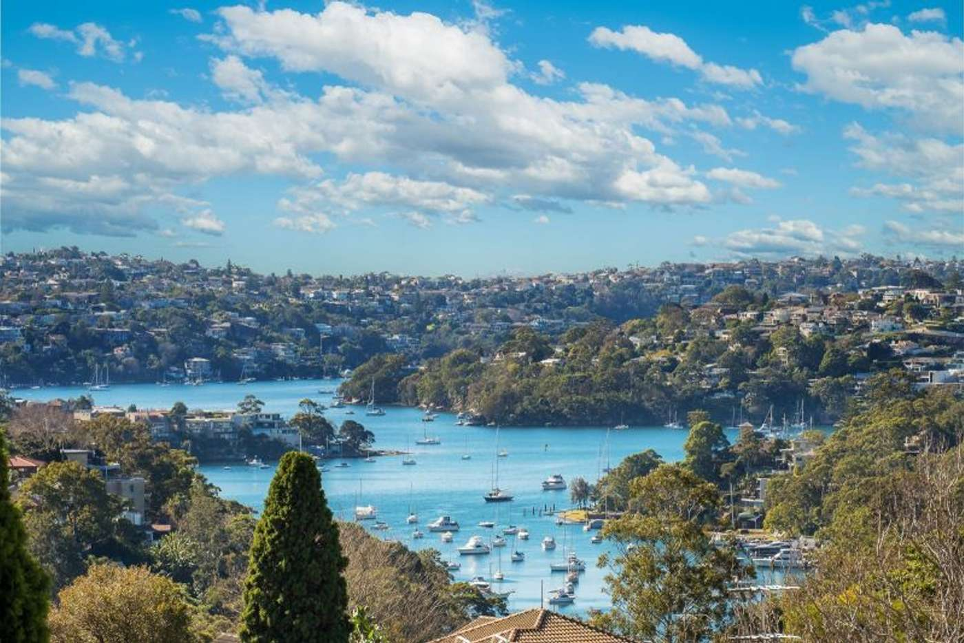 Main view of Homely apartment listing, 8 Sutherland Street, Cremorne NSW 2090
