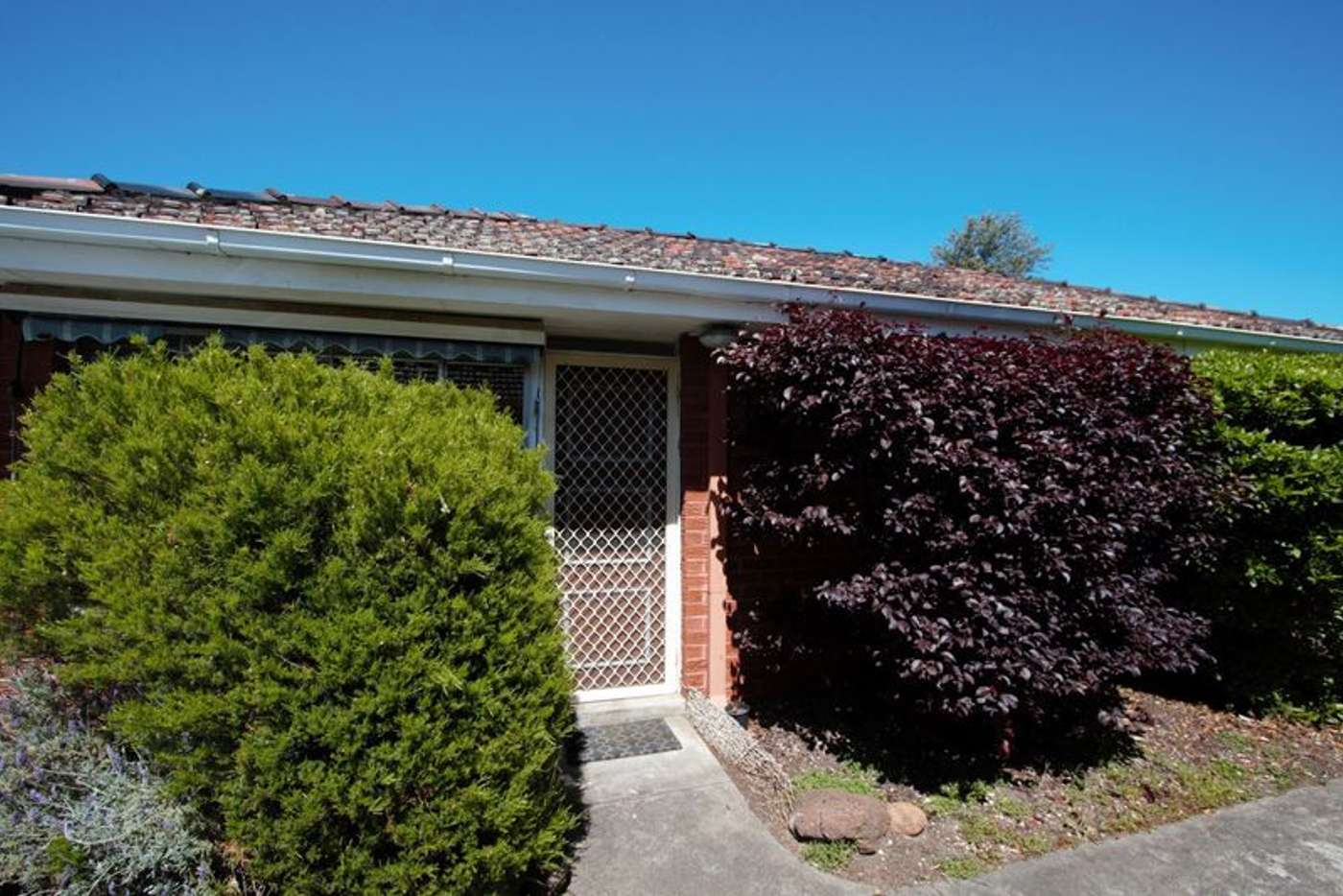 Main view of Homely unit listing, 7/28 Tulip Grove, Cheltenham VIC 3192