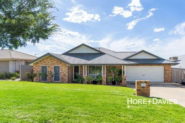 16 Osterley Street, Bourkelands NSW 2650