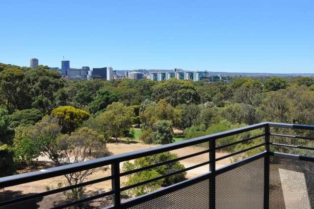 11/150 Strangways Terrace, North Adelaide SA 5006