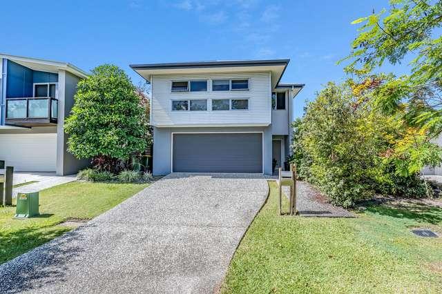 36 Daintree Drive, Coomera QLD 4209