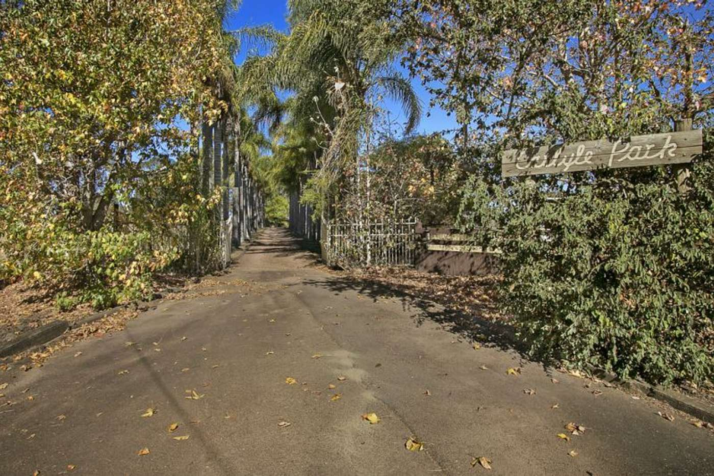Seventh view of Homely acreageSemiRural listing, 204-208 Church Lane, Castlereagh NSW 2749
