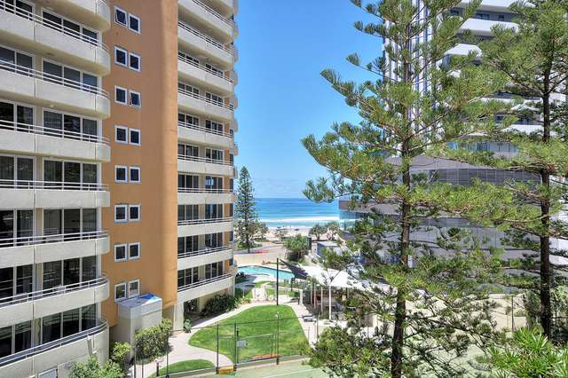 44/19 Orchid Avenue, Surfers Paradise QLD 4217