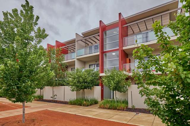 115/311 Flemington Road, Franklin ACT 2913