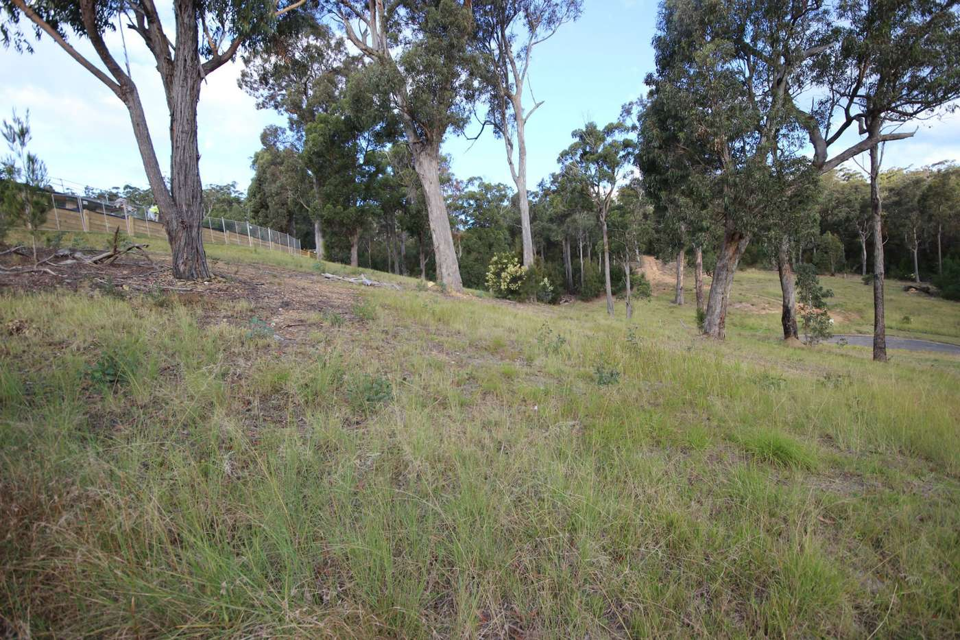 Main view of Homely  listing, Lot 103 Cornubia Place St, Boydtown, NSW 2551