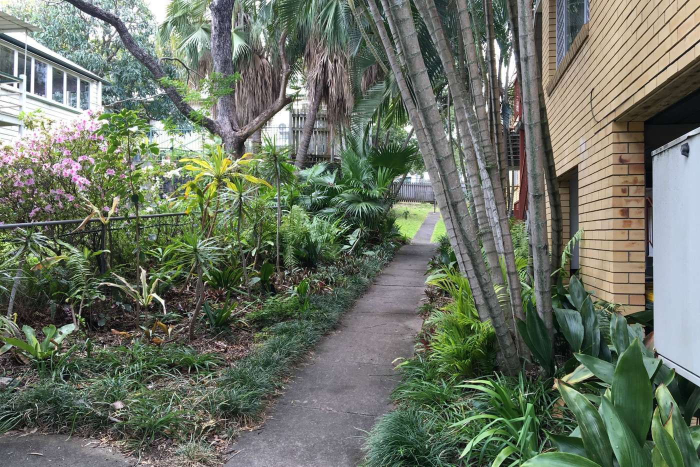 Sixth view of Homely unit listing, 3/11 McIlwraith Street, Auchenflower QLD 4066