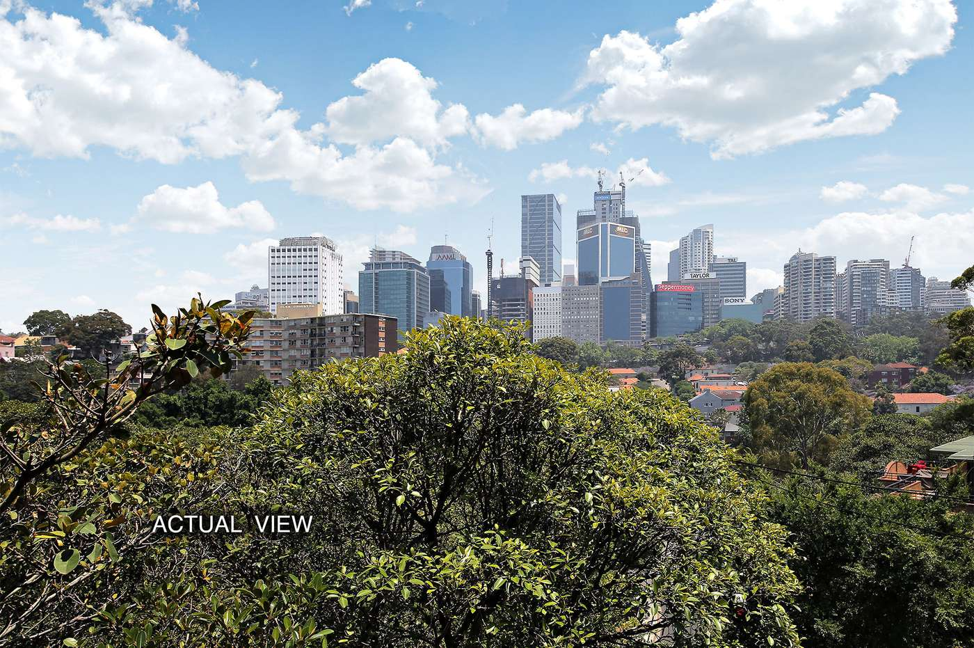 Main view of Homely unit listing, 3/1 Holdsworth Street, Neutral Bay, NSW 2089