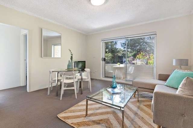 60 Alt St, Ashfield NSW 2131