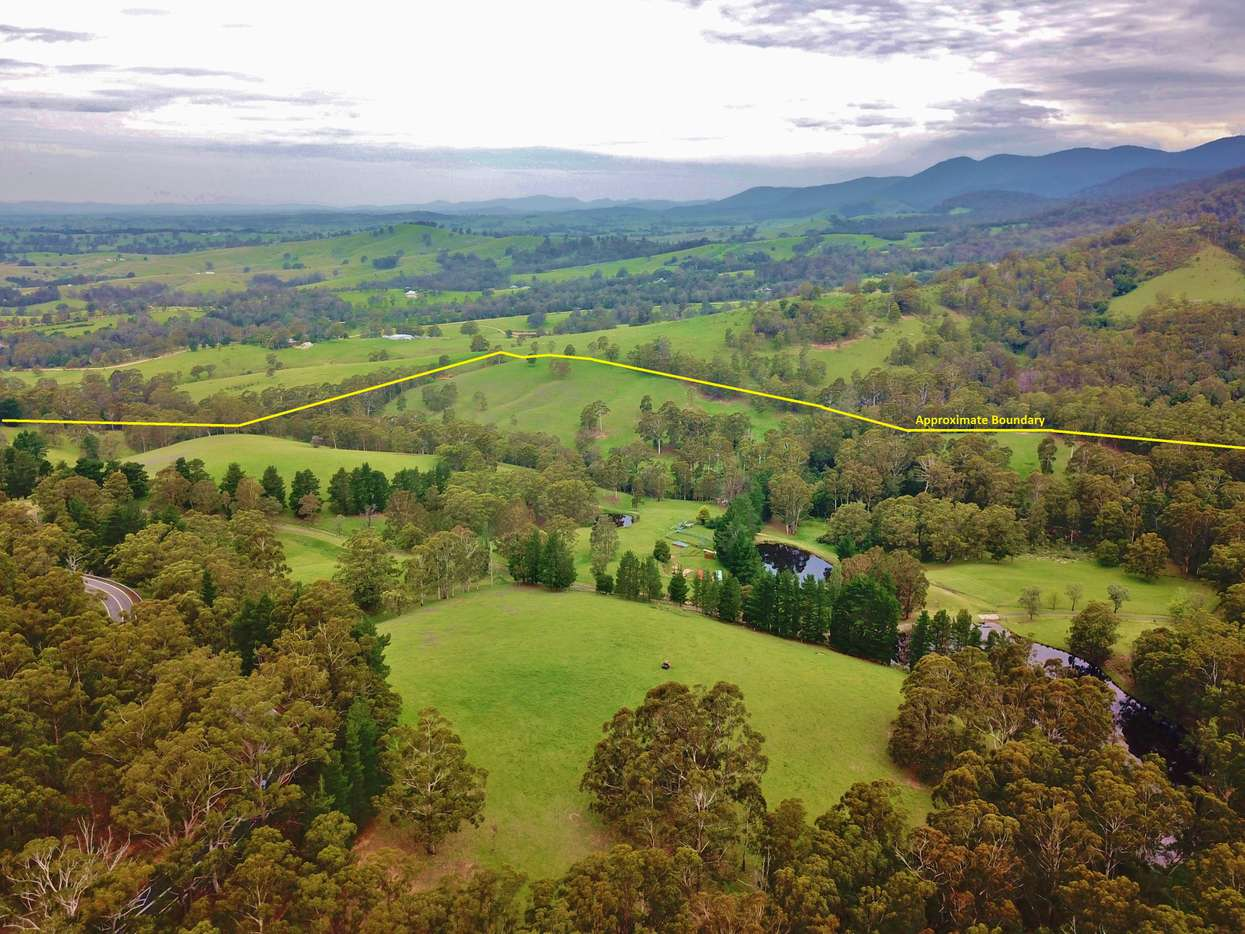 Main view of Homely  listing, 3739 Snowy Mountains Hwy, Bemboka, NSW 2550