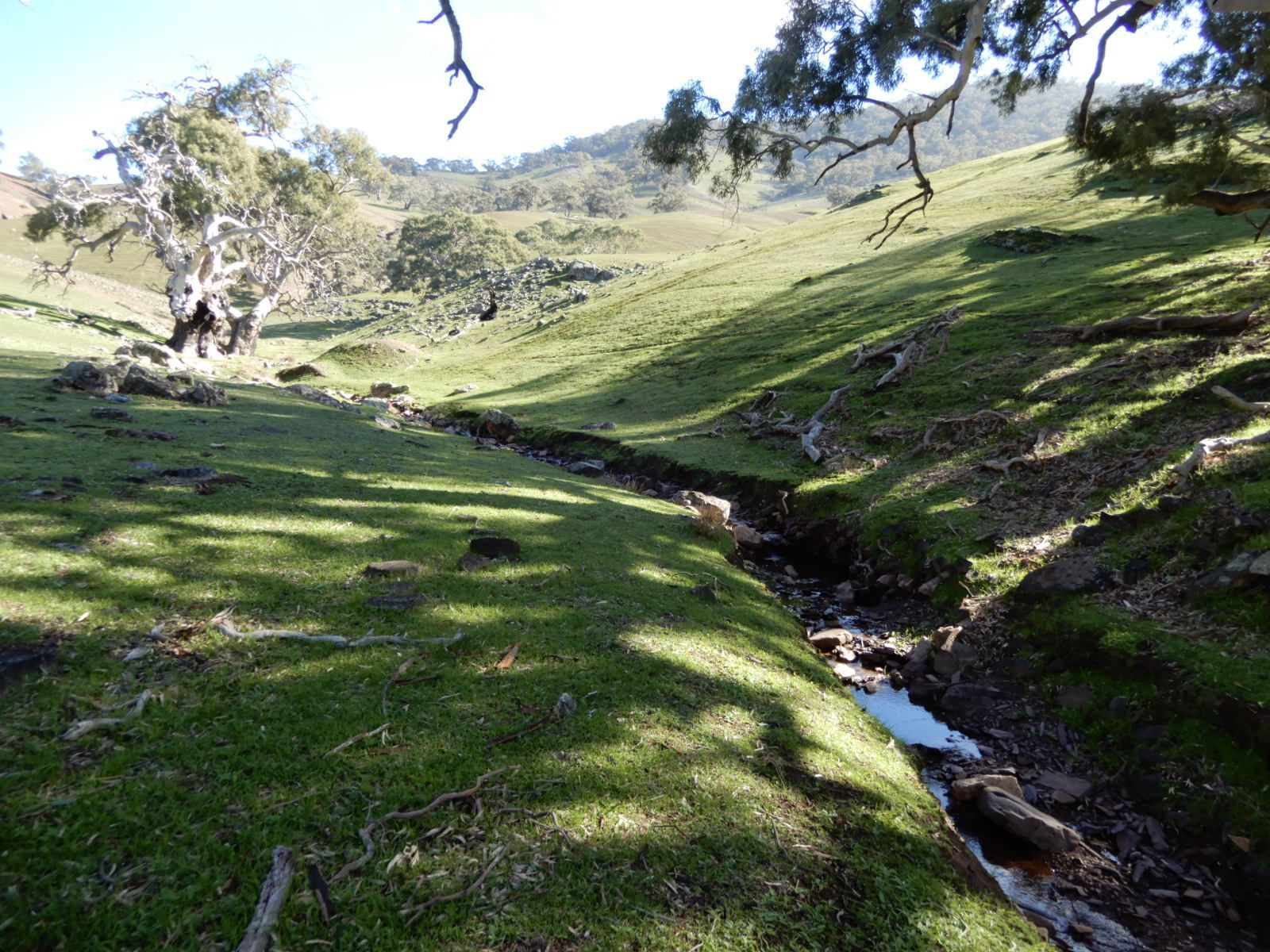 Sold Rural Property Broadview Track Wilmington Sa 5485 Nov 1 Images, Photos, Reviews