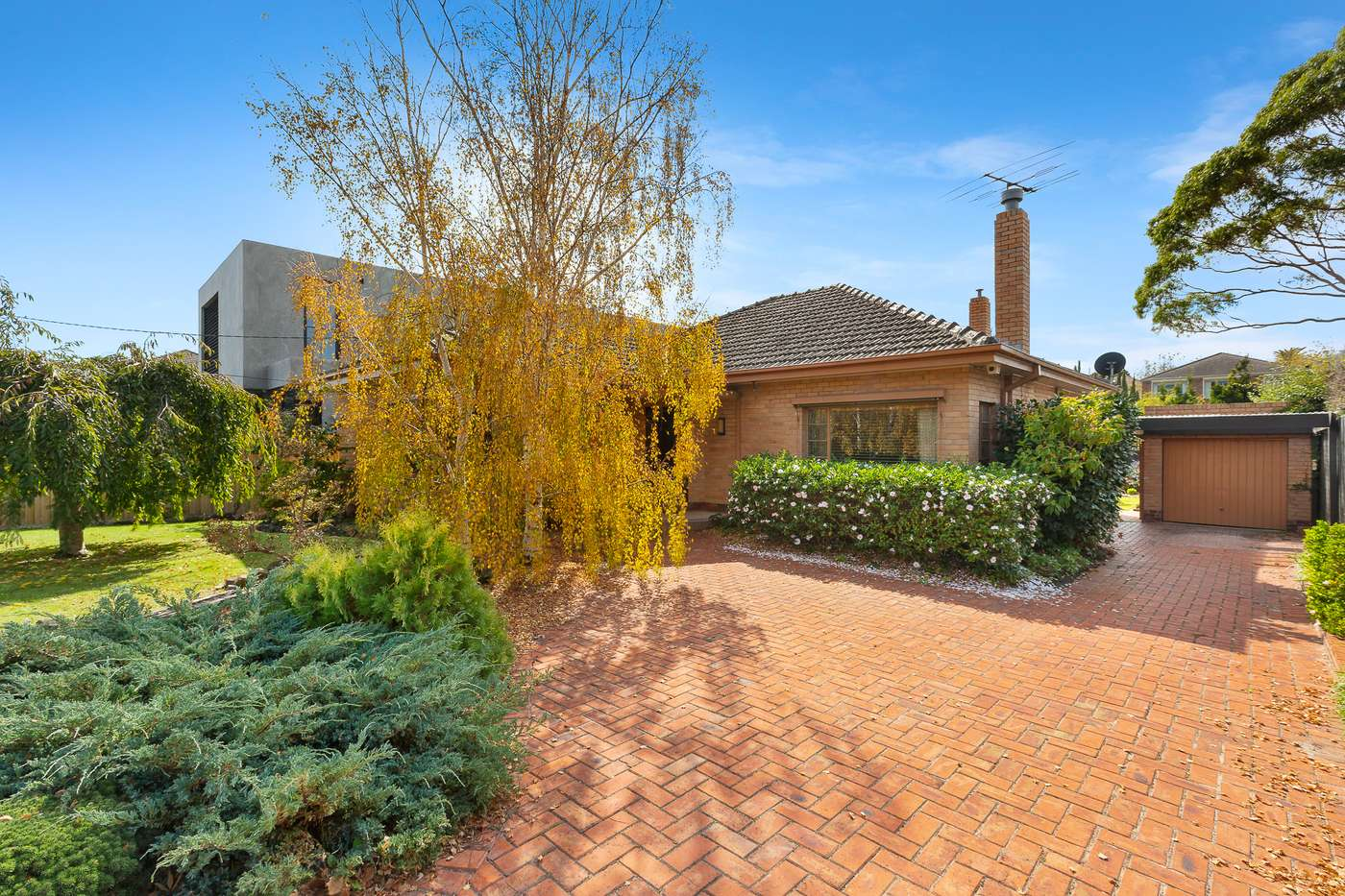 Main view of Homely house listing, 31 Huntingfield Rd, Brighton, VIC 3186