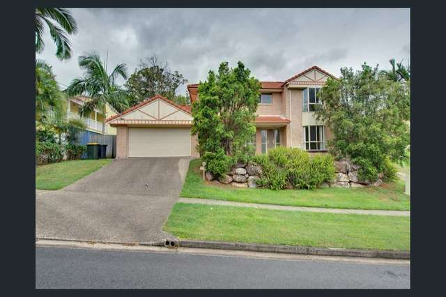 6 Hector Rd, Holland Park QLD 4121