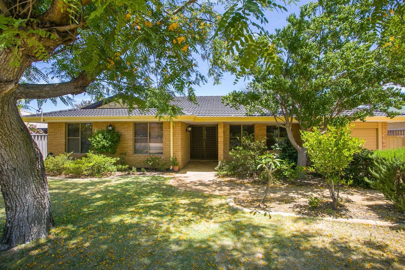 Main view of Homely house listing, 30 Sapling Way, Hocking WA 6065