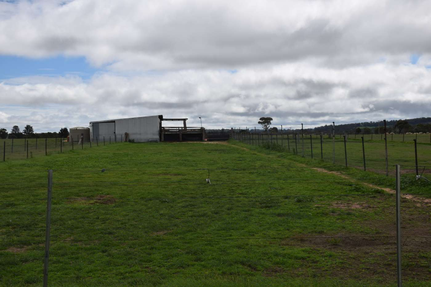 Seventh view of Homely acreageSemiRural listing, 3713 Thunderbolts Way, Uralla NSW 2358