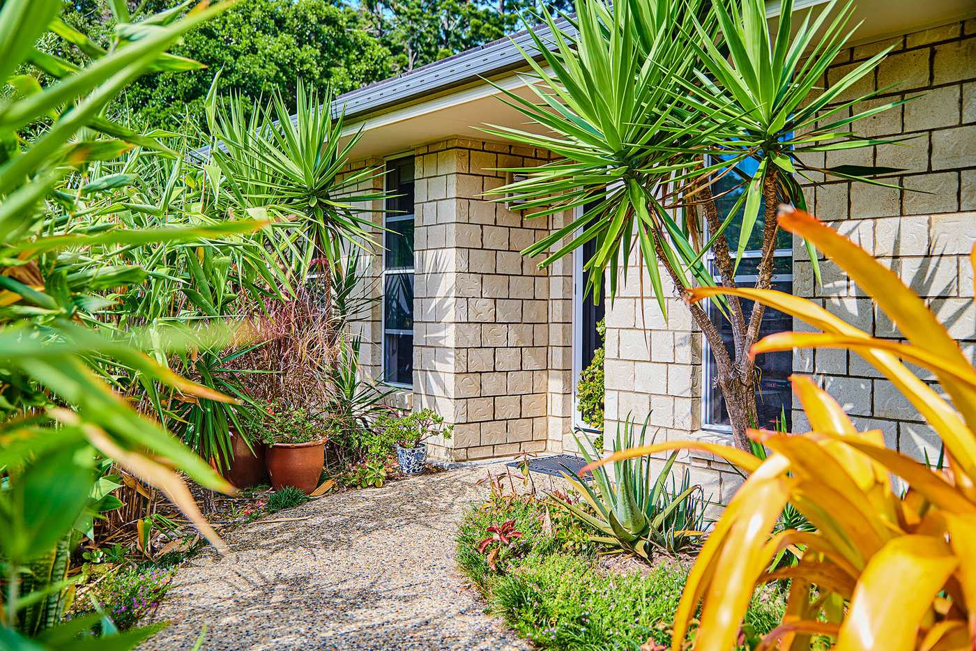 Main view of Homely house listing, 4 Gara Ct, Ocean Shores NSW 2483