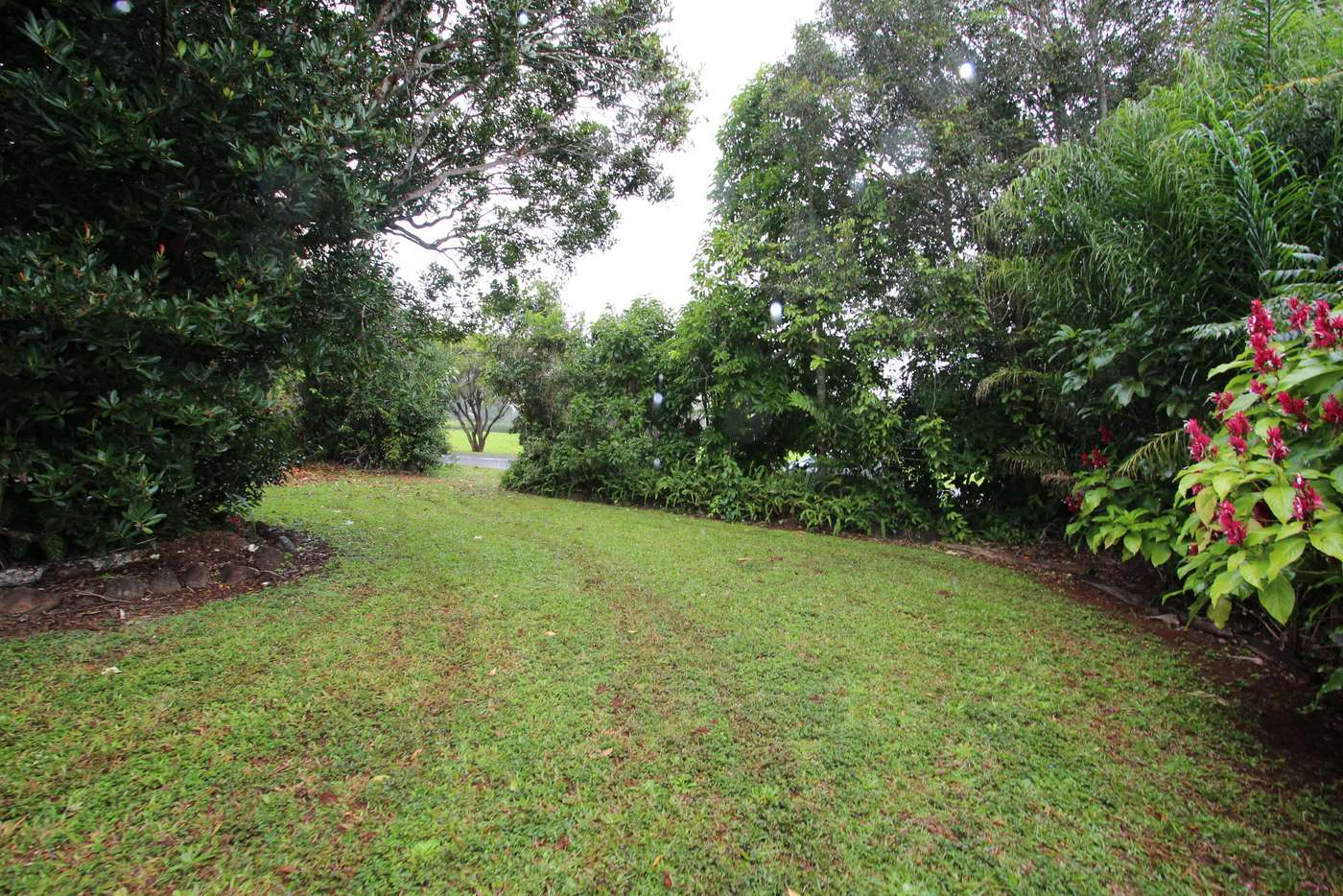 Sixth view of Homely residentialLand listing, 19 Beech St, Yungaburra QLD 4884