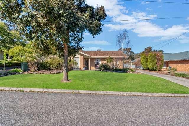 13 Linton St, Banksia Park SA 5091