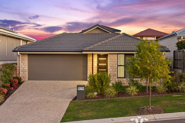 37 Jersey Cres, Springfield Lakes QLD 4300