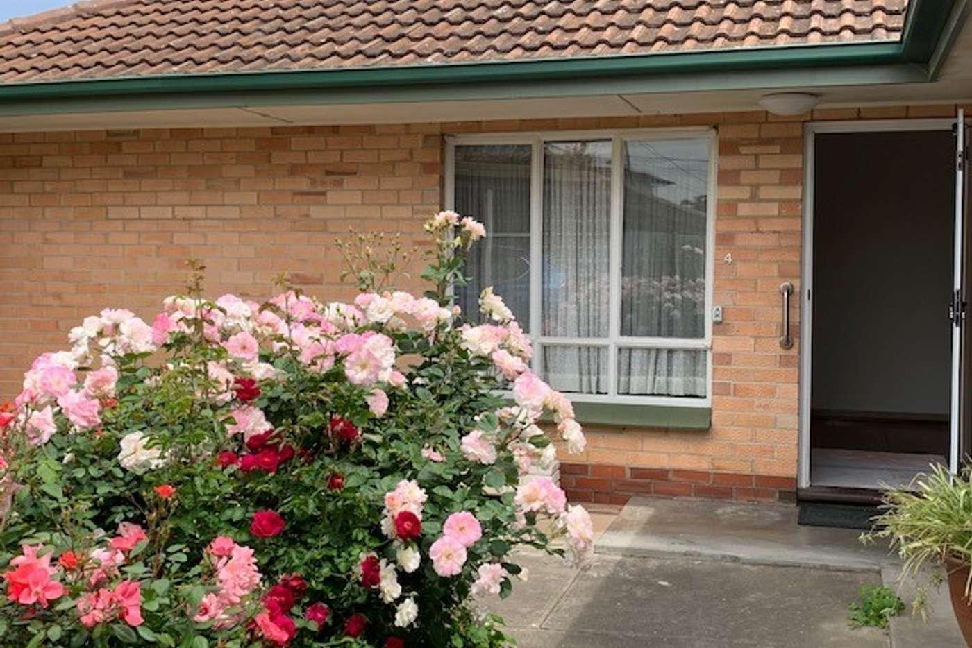 Main view of Homely unit listing, Unit 4/11 Acacia Ave, Glenelg North SA 5045