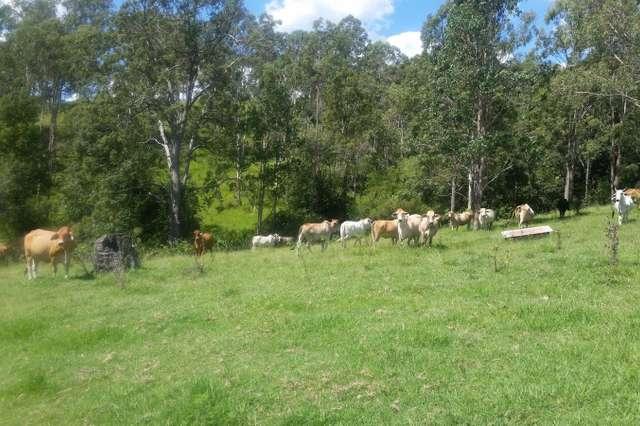 Lot 11 Yongurra Road, Kyogle NSW 2474