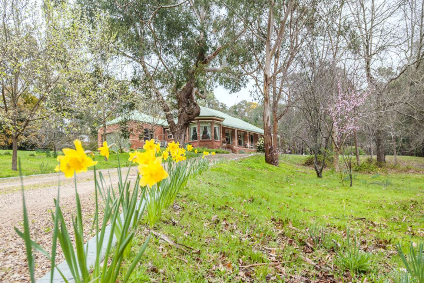 Main view of Homely house listing, 35 McBean Avenue, Macedon VIC 3440