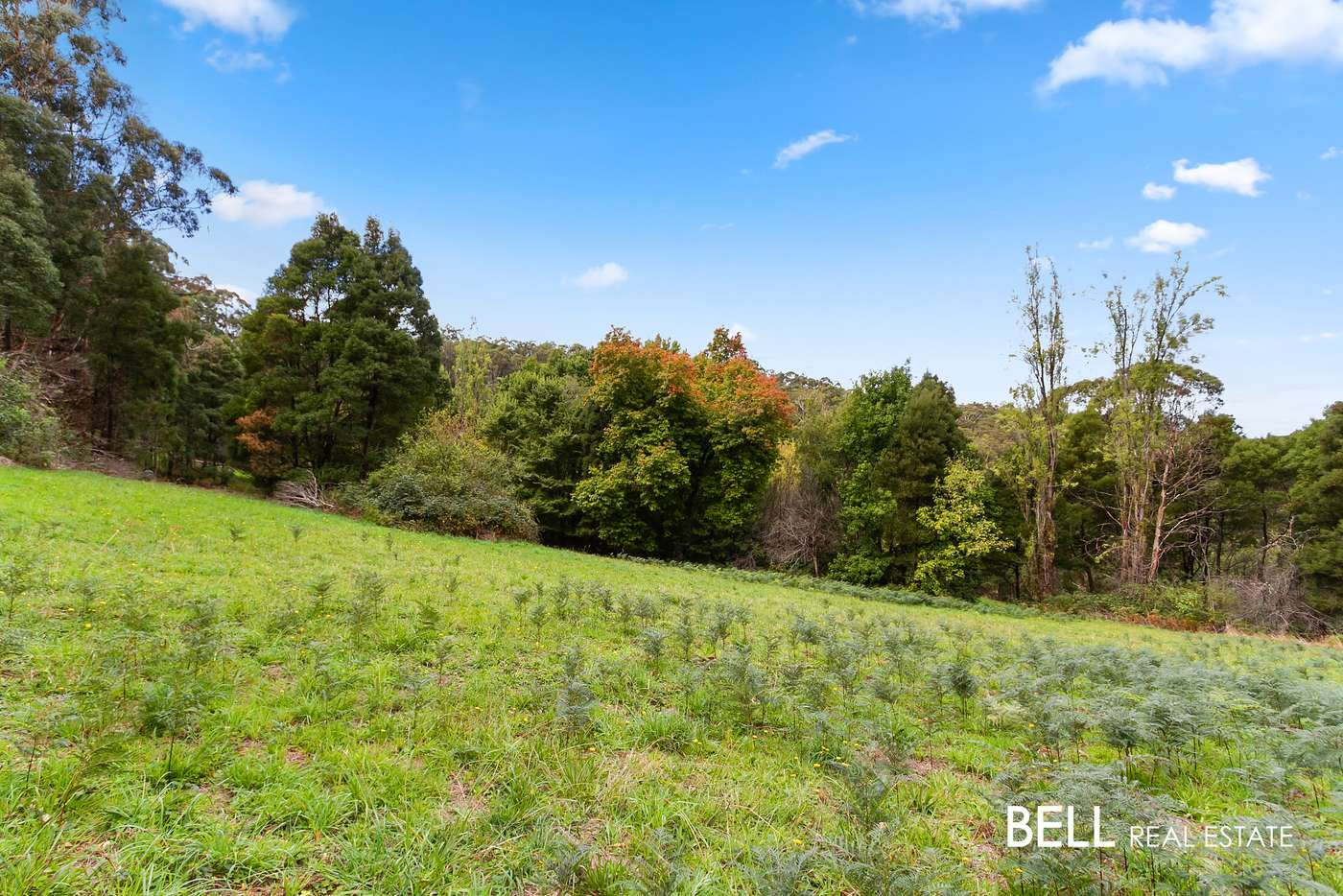 Main view of Homely  listing, 29 Selby Aura Road, Menzies Creek, VIC 3159