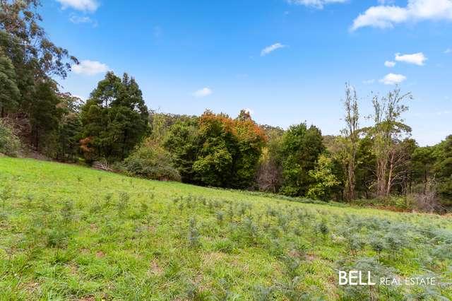 29 Selby Aura Road, Menzies Creek VIC 3159