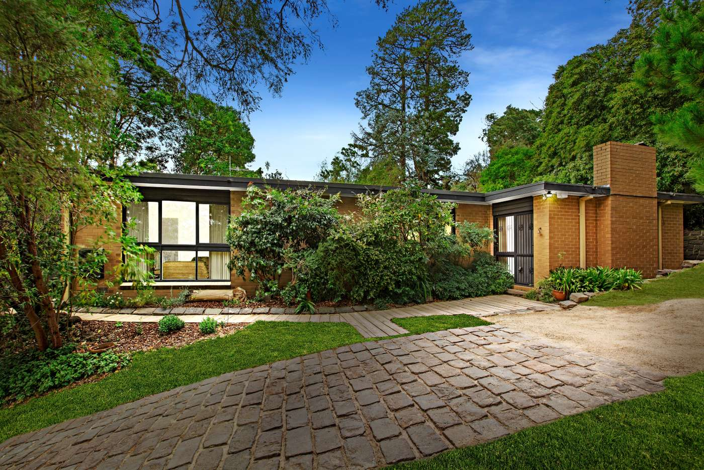 Main view of Homely house listing, 24 Shane Crescent, Croydon South VIC 3136