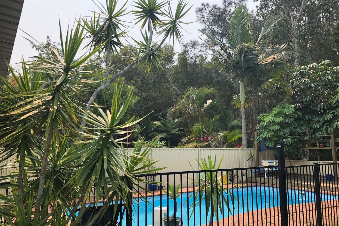 Seventh view of Homely house listing, 14 Redbox Crescent, Sandy Beach NSW 2456