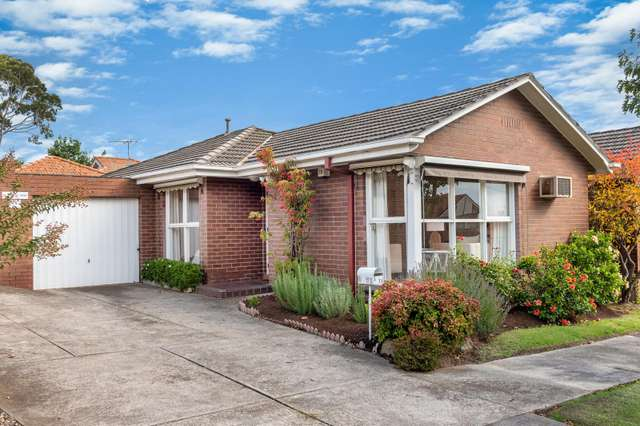 3/71 Dorking Road, Box Hill North VIC 3129
