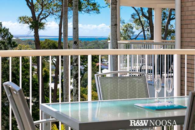 24/2 Serenity Close, Noosa Heads QLD 4567