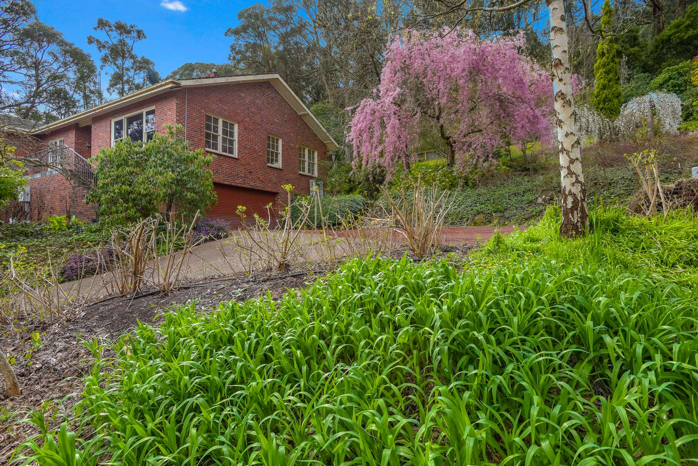 Main view of Homely house listing, 74 Douglas Road, Mount Macedon VIC 3441