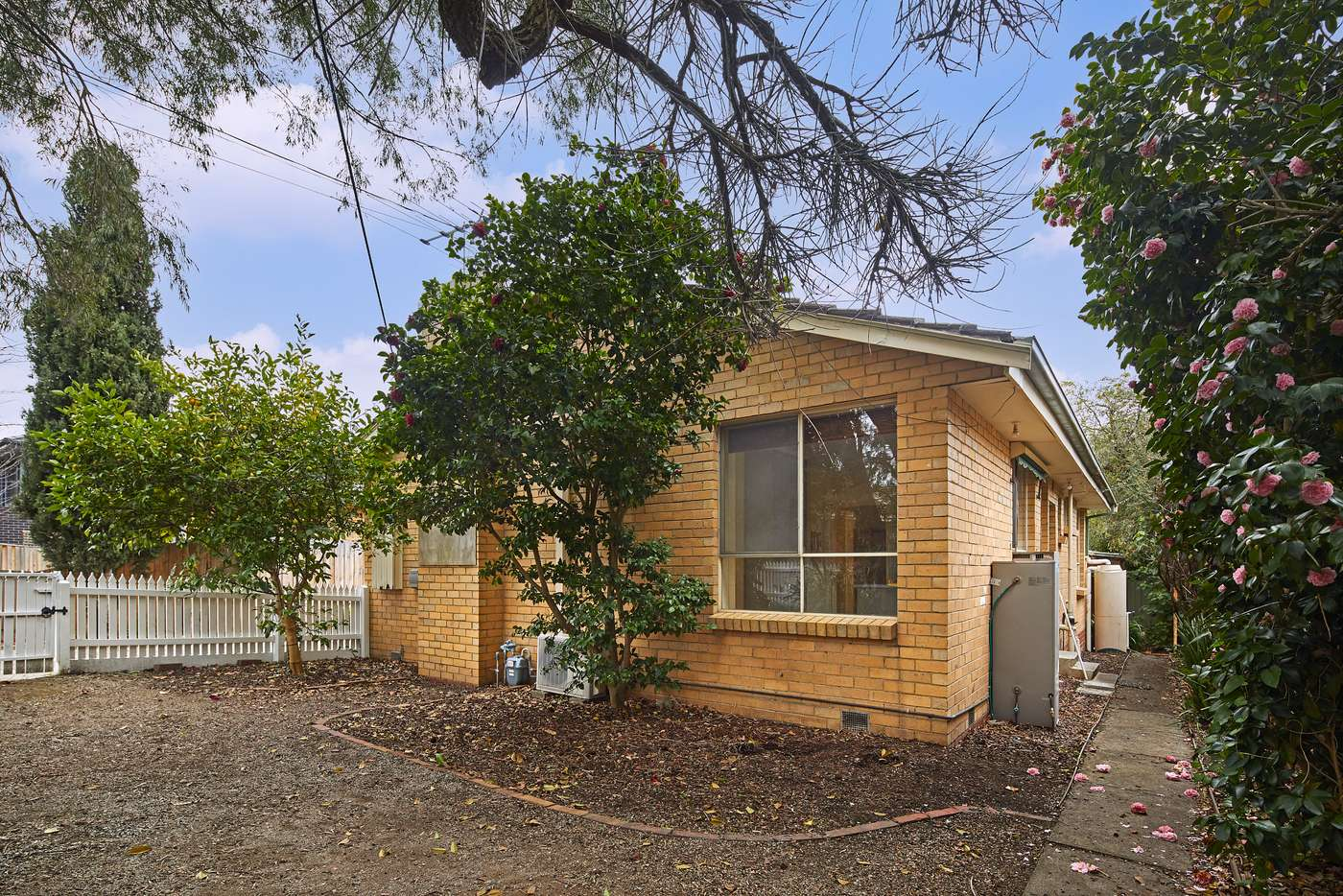Main view of Homely unit listing, 1/75 Junction Road, Blackburn North VIC 3130